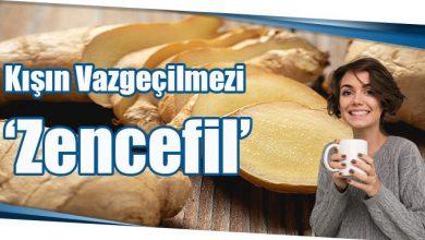 Photo of Kışın Vazgeçilmezi 'Zencefil'
