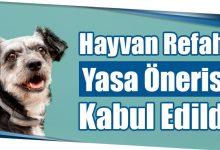 Photo of Hayvan Refahı Yasa Önerisi Kabul Edildi