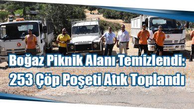 Photo of Boğaz Piknik Alanı Temizlendi: 253 Çöp Poşeti Atık Toplandı